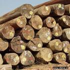 供应木材原木进口代理专业操作木材进口图片