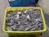 深圳工厂废料回收 深圳电子废料回收 锡渣回收