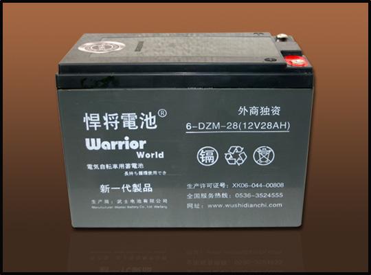 蓄电池dzm系列图片