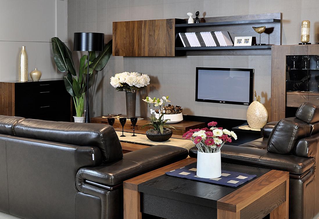 简约时尚客厅家具图片