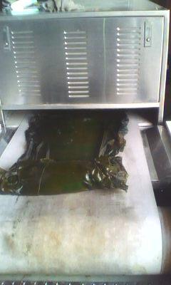 供应微波海带加工设备