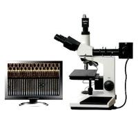 供应MSHOT数码金相显微镜ME31
