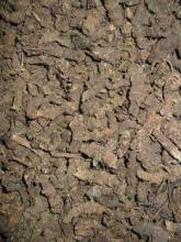供应蜘蛛香中药饮片植物原药材超细粉