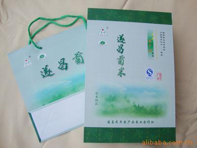 包装 包装设计 购物纸袋 纸袋 400_300