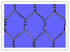 供应六角网、拧花网、格宾网、石笼网、龟甲网、挂网批发