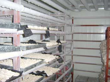 商场冷库的使用和管理-学路网-学习路上 有我相伴