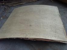 供应异形胶合板YT03型