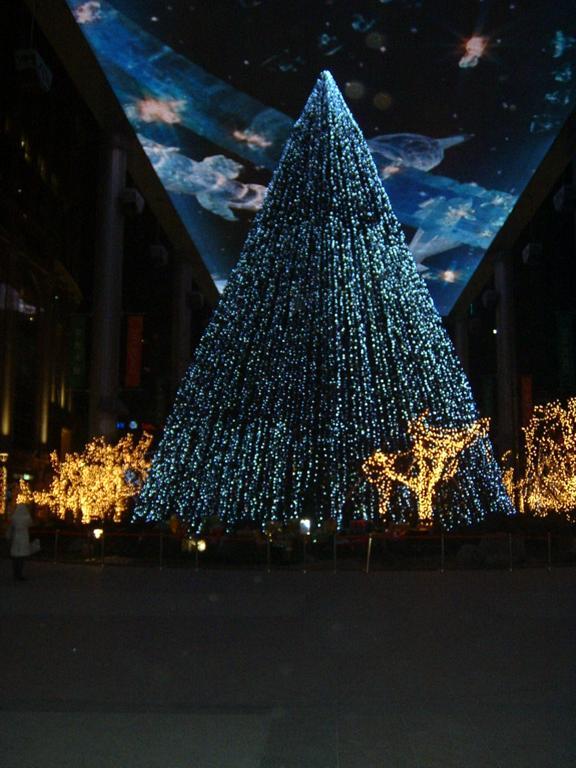 供应北京圣诞树圣诞节装饰布景led圣诞灯串