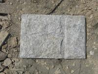 供应白木纹蘑菇石