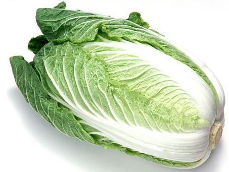 供应新鲜叶菜