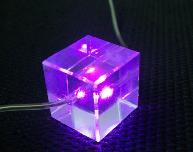 LED发光项链图片