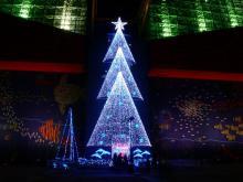 供应圣诞灯