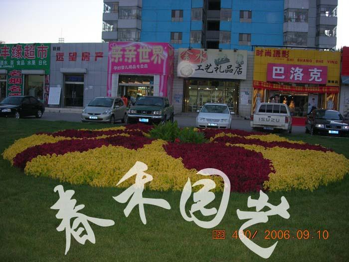 内蒙古园艺:赤峰春禾园艺科研开发有限责任公司