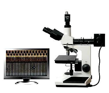供应数码金相显微镜