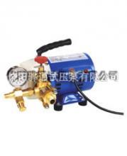 供应微型电动试压泵