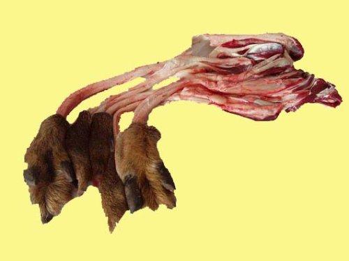 鹿肉菜谱之鹿筋木瓜汤