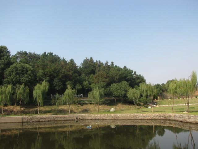 武汉太阳岛国际俱乐部电话号码为027-85388100的求购信息
