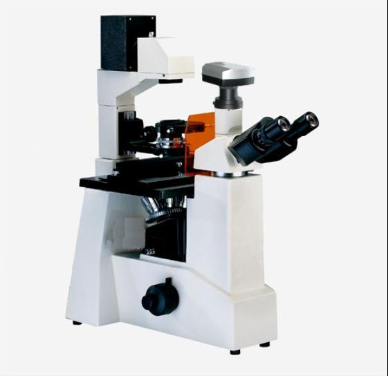 倒置偏光生物显微镜