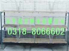 供应养兔笼仔母兔笼繁殖兔笼批发