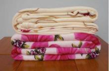 供应珊瑚绒毯