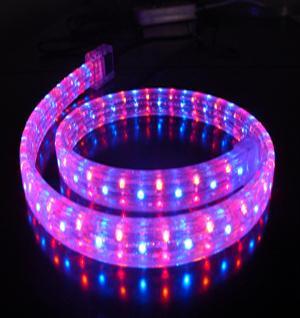 供应LED彩虹管