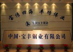 中国宝丰钢业