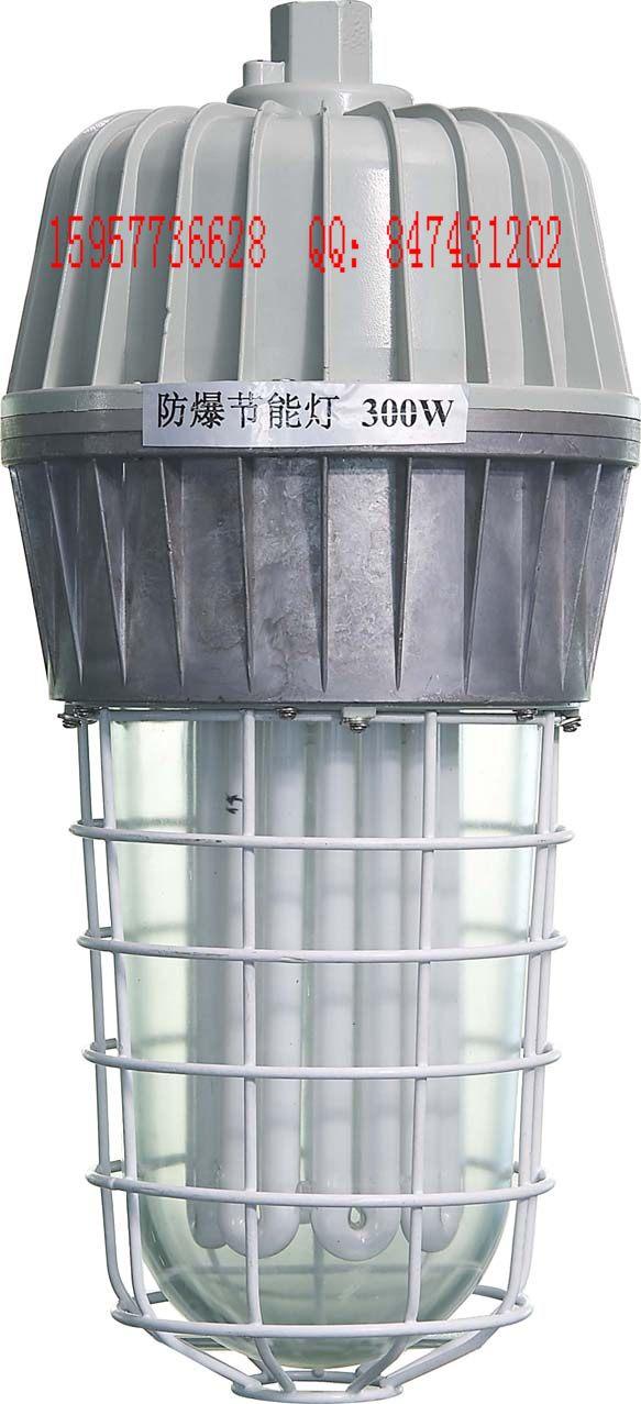 供应300w大功率防爆节能灯
