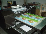 PVC数码印花机图片