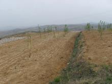 供应200亩土地出租