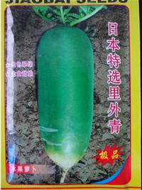 日本特选里外青水果萝卜种子图片/日本特选里外青水果萝卜种子样板图