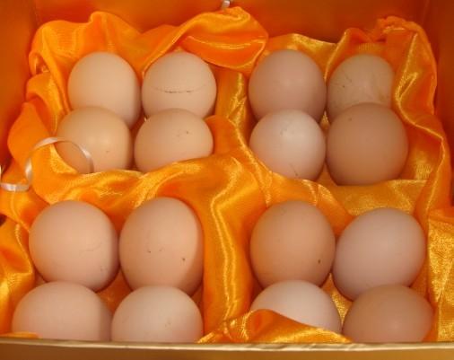 供应无铅皮蛋 无铅皮蛋价格,批发价,质量保证价格实惠图片