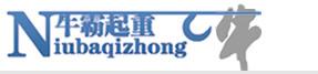 天津牛霸起重设备贸易有限公司