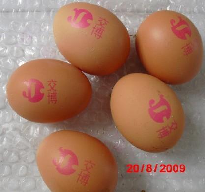 供应土鸡蛋喷码机厂家,鸡蛋喷码机批发