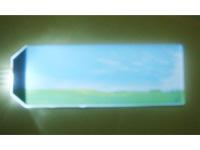 宁波大榭开发区鹏程光电器件厂