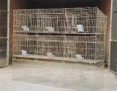 供应母兔笼种兔笼繁殖笼批发