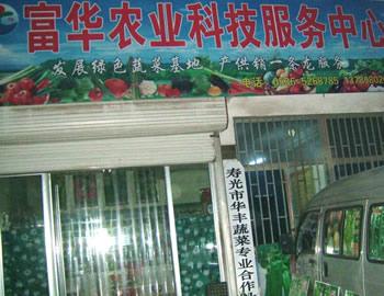 山东寿光富华蔬菜种子公司山东寿光蔬菜种子市场3号楼17号