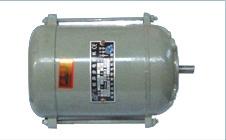 供应YS56 01系列单相步电动机