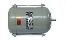 YS56 01系列单相步电动机图片