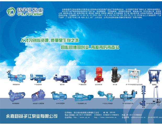 浙江省永嘉县扬子江泵业有限公司