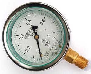 耐震压力表图片/耐震压力表样板图 (1)