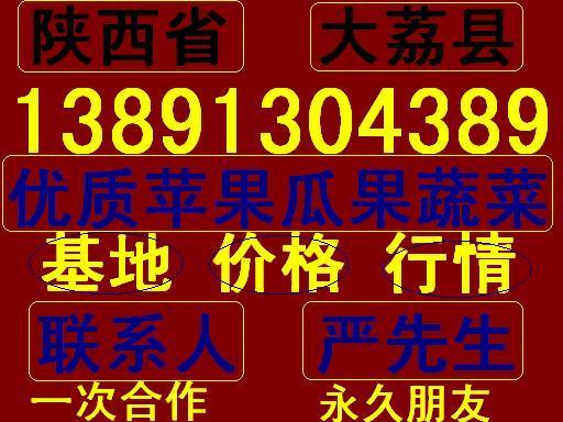 陕西省大荔县优质瓜果苹果基地产地价格行情