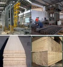 供应青岛国森专利产品重竹地板成套加工设备生产线