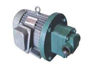 衢州齿轮泵